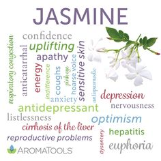 7 Essential Oils for Energy Jasmine Oil, Jasmine Essential Oil, Essential Oils For Pain, Citrus Essential Oil, Eucalyptus Essential Oil, Essential Oil Uses, Young Living Essential Oils, Oils For Energy, Oil Benefits