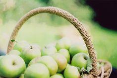 Steel Magnolias and Sweet Tea Old Orchard, Apple Orchard, Apple Tree, Red Apple, Apple Garden, Apple Farm, Apple Jelly, Apple Harvest, Harvest Grill