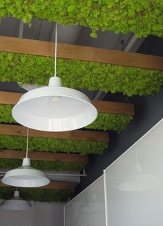 Natur Deko in Form von Moos   wall   Pinterest   Living walls, Green ...