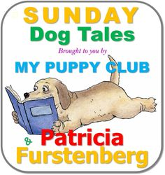 Silver Stars and Puppy Tails by Patricia Furstenberg