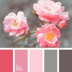 color marrón grisáceo, color rosa, color rosa de té, frambuesa y gris, gris y carmesí, gris y marrón, gris y rosado, marrón y gris, matices del rosado suave, rosado pálido, rosado suave, rosado vivo, rosado y gris, tonos rosados.
