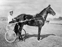 "HARNESS RACING, 1900s: Dan Patch, ""The First Sports Super Star,"" was the most heralded pacer of the times. He broke 14 speed records. Dan Patch is acclaimed as the ""greatest harness horse in the history of the two-wheel sulky.""  He set the world record of 1.55 for the mil - a record that has been equaled once but never broken."