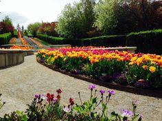 The Italian Garden at Ashton Gardens.