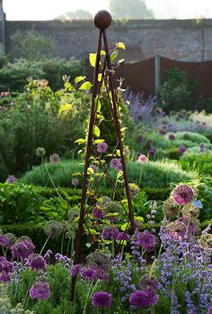 Allium in the herb garden & obelisk Garden Inspiration, Plants, Beautiful Gardens, Garden Photography, Garden Obelisk, Herb Garden, Garden Wall, Cottage Garden, Garden Art