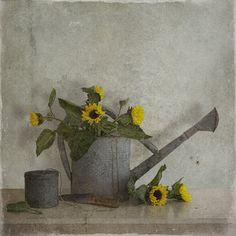 ❤ - Tineke Stoffels - Still Life With Watering Can, processing by Tineke Stoffels