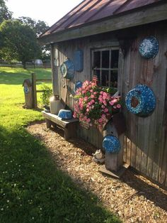 **Love the Blue Graniteware by the Shed**