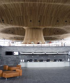 Welsh Assembly Building in Cardiff Bay by Richard Rogers Partnership Beautiful Architecture, Interior Architecture, Interior Design, Bamboo House Design, Cardiff Bay, Timber Ceiling, Organic Structure, Ceiling Design, Store Design