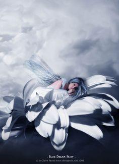 ✯ Flower Fairy Blue Dream :: Artist Anne-Claire Payet ✯