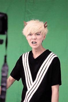 Angry deer….