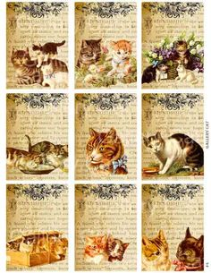 VINTAGE CATS on Old Friendship Page Digital Collage by GalleryCat, $3.50