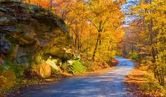 Looking for a road trip to take in some fall colors close to home? Check out these six suggestions in Illinois, Indiana, Ohio, Iowa, Wisconsin and Michigan. Shawnee National Forest, Chicago Things To Do, Southern Illinois, Lombok, Great Lakes, Places To See, National Parks, Around The Worlds, Marvel