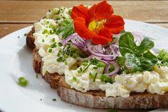 Een prima manier om wat minder dierlijke producten te eten is door een vegetarische boterham te eten. We geven je 15 voorbeelden van vegetarisch broodbeleg.