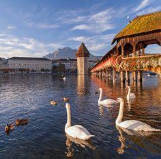 <P>6. Zwitserland, het meer van Lucerne</P>