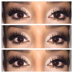 dbb2c24d068 Luxury meets Lash Bunny -- this collection is filled with beautiful lashes,  medium in volume, in a variety of styles all hand made to PERFECTION!