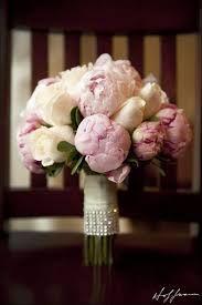 Výsledok vyhľadávania obrázkov pre dopyt pivonky svadobna kytica