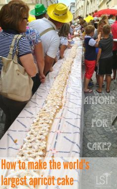 Making the world's largest apricot cake in Krems, Lower Austria