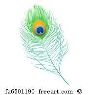 Peacock Feather Peacock - Art Print