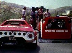 Targa Florio 1974 Lancia Stratos G.Larrousse - A.