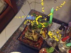 Di tutto e di più sulla Sardegna di Giurtalia e tanto altro ancora.: Le mimose perenni, fatte in casa con poco!!