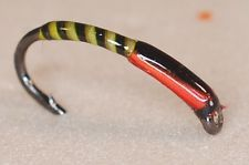 b 38.6 quality black buzzers with light olive quill rib hot orange cheeks