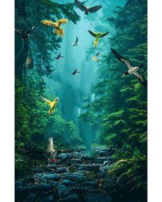 picsart save birds photo editing  nature photo editing  2.0 message accept - Picsart ki Duniya