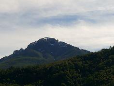 San Fabian de Alico, VIII region.
