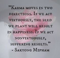 Karma moves in two directions. If we act virtuously, the seed we plant will result in happiness. If we act nonvirtuously, suffering results. ~Sakyong Mipham