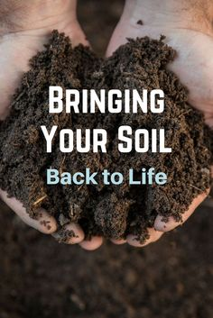 Discover how to bring your soil back to life using @kellogggarden Products