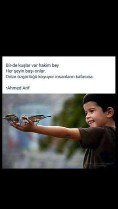 Bir de kuşlar var hakim bey ... Ahmed Arif