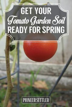 Get Your Tomato Garden Soil Ready For Spring! | Gardening Tips And Tricks | Homesteading Ideas by Pioneer Settler at http://pioneersettler.com/get-your-tomato-garden-soil-ready-for-spring/: