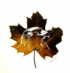 Omid Asadi, art in leaves