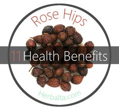 Rose hips are rich in flavonoids which strengthen the capillaries and aid in the assimilation of vitamin C in the body. Cancer, colds, coughs, diarrhea, exhaustion, flu, gingivitis, hemorrhoids, urinary tract infections and varicose veins can all benefit from the treatment of rose hips. #RoseHips #RoseHipsTea #herbalremedies #herbalmedicine #herbaltea #health #medicine #herbalife #herbal #tea #f4f #herbalta
