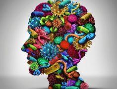 Canadauence TV: Quantas bactérias vivem no seu corpo? Entre e desc...