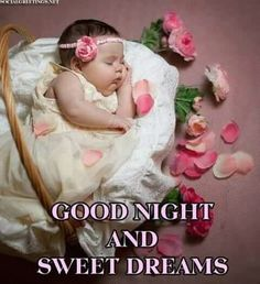 Good night sister and yours, sweet dreams 🌜😋🌛🐇🐣❤💋 Good Night Sister, Lovely Good Night, Good Night Baby, Beautiful Good Night Images, Good Night Prayer, Good Night Friends, Good Night Blessings, Good Night Sweet Dreams, Good Morning Good Night