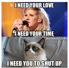 Ellie Goulding is one of my favorite singers, grumpy cat. Don't diss her.