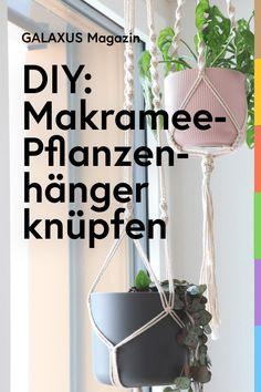 Deine Pflanzen im Boho-Stil aufzuhängen, ist gar nicht so schwierig. Mit der richtigen Knüpfanleitung, etwas Geduld und diesen Tipps klappt's mit dem DIY-Projekt bestimmt.