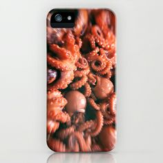baby octopus  iPhone & iPod Case