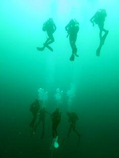 Pinterest Scuba Diving