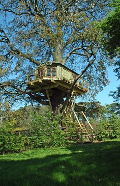 Tree house designed and built by Plan Eden, Peter O' Brien www. Garden Tree House, Garden Trees, Outdoor Life, Outdoor Fun, Sustainable Architecture, Pavilion Architecture, Residential Architecture, Contemporary Architecture, Exotic Homes