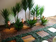 jardim vasos - Pesquisa Google