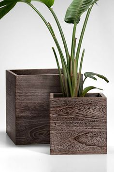 Jamali Garden Outdoor Wood Cube Planter