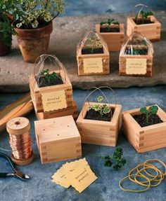 Sake boxes are an unusual twist on the typical terra-cotta pot. Fill a bunch with aromatic herbs, small flowers, or succulents. These tiny containers are the perfect DIY Christmas gift to help bring a little greenery to a small apartment or a busy office. Photo: Martha Stewart Living/Pinterest