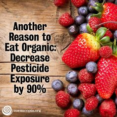 Given that our government deems the profits of chemical companies to be more important than the health of its citizens, is it any surprise that 41% of Americans will get cancer and 21% of Americans will die from cancer? More here:http://www.cornucopia.org/2014/05/another-reason-eat-organic-decrease-pesticide-exposure-90/#more-12224 #GMOs #Pesticides #food #organic #nonGMO