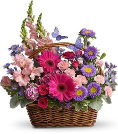 Order Country Basket Blooms flower arrangement from Neffsville Flower Shoppe, your local Lancaster, PA florist. Send Country Basket Blooms floral arrangement throughout Lancaster, PA and surrounding areas. Basket Flower Arrangements, Beautiful Flower Arrangements, Floral Arrangements, Beautiful Flowers, Birthday Flower Arrangements, Ikebana, Mini Carnations, Order Flowers Online, Mothers Day Flowers
