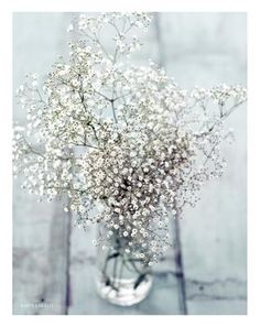 baby's breath makes a beautiful bouquet on its own
