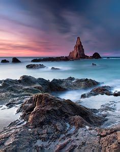 Reef Sirens (Cabo de Gata)