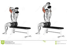 Exercising. Extension Arms With A Dumbbell From Be - Download From Over 45 Million High Quality Stock Photos, Images, Vectors. Sign up for FREE today. Image: 43932472