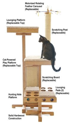 """I love the name of this company - Cat Power Tower - it makes me want to kick my leg out and say, """"POWER!"""" The Cat Power Tower is much more than a sisal scratching post or a modern cat tree, I think of it is as a cat gym. Fancy Feast Cat Food, Cat Gym, Diy Cat Tree, Cat Jokes, Cat Enclosure, Cat Condo, Pet Furniture, Scratching Post, Cat Supplies"""