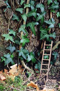 Fairy Ladder for Fairy door - Fairy garden - Fairy ladder for tree Fairy Doors On Trees, Fairy Tree Houses, Simple Garden Designs, Fairy Garden Furniture, Cottage Garden Design, Gnome Garden, Landscape Lighting, Summer Garden, Amazing Gardens