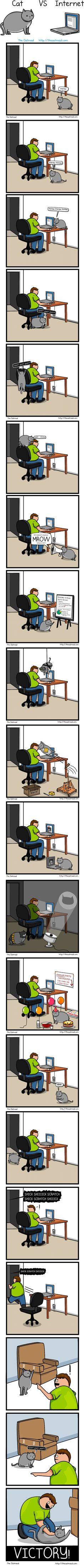 Cat-VS Internet-576-large.jpg (689×12848)